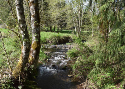 Middleground river