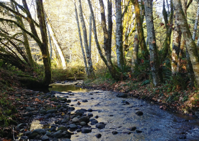 Middle Ground Creek Core